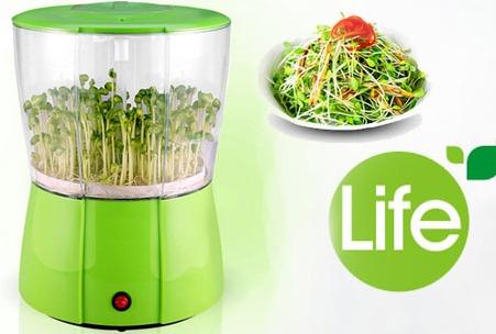 Máy làm giá đỗ Green Life GL611