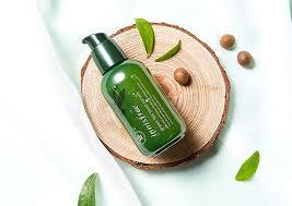 Serum dưỡng da Innisfree The Green Tea Seed Serum