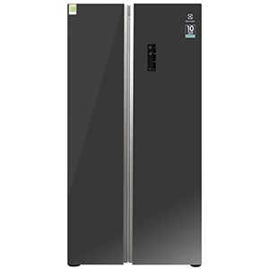 Tủ lạnh Inverter Electrolux ESE6201BG-VN