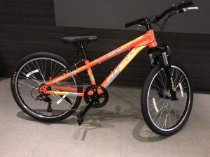 Xe đạp địa hình Phoenix Echo 4.0-W7