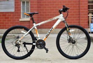 Xe đạp thể thao Giant