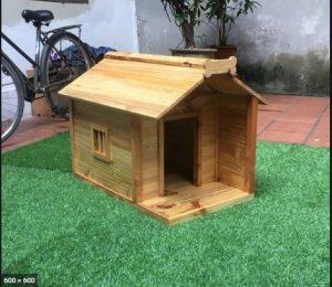 Chuồng chó bằng gỗ ngoài trời