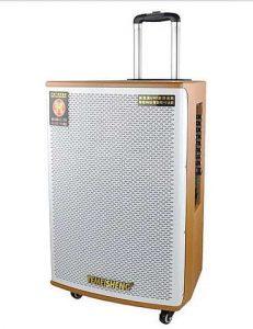 Loa vali kéo Bluetooth Karaoke Temeisheng GD1515