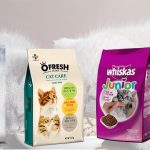 Top 8 thức ăn cho mèo tốt nhất hiện nay 2021