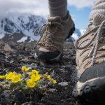 Top 5 Giày leo núi tốt nhất hiện nay 2021